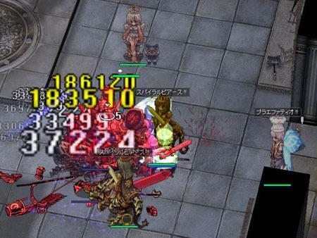 200524d.jpg